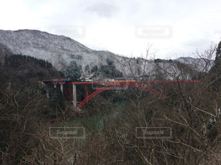 赤い橋の写真・画像素材[1407975]