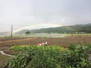 虹ふたたびの写真・画像素材[1408526]
