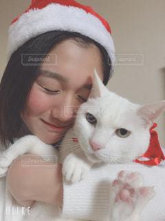 女性,1人,猫,動物,白,ねこ,ペット,人物,肉球,癒し,クリスマス,大好き,オッドアイ,ネコ,13歳