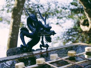 神社の写真・画像素材[302483]