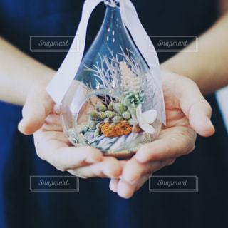 食べ物のかけらを持っている手の写真・画像素材[940270]