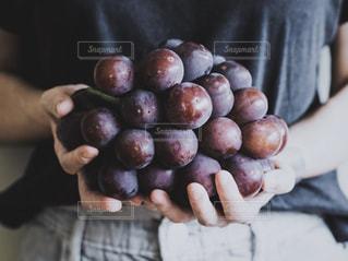 りんごを持っている人の写真・画像素材[2931624]
