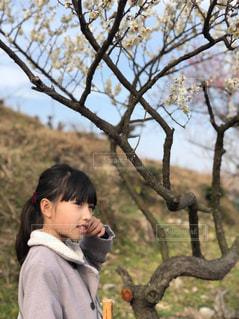 花,春,屋外,梅,花見,女の子,お花見,外,兵庫県,白梅,綾部山