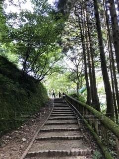 鳥取の写真・画像素材[2740262]