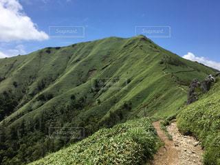 登山道の側のビューの写真・画像素材[766053]
