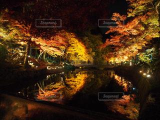 川のぼやけた画像 - No.854817