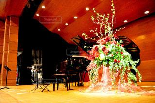 花,屋内,ピアノ,床,大きい,芸術,クリスマス,音楽,装飾,フラワーアレンジ,豪華,ステージ,コンサート,クラシック,Nikon,舞台,ホール,クリスマスカラー