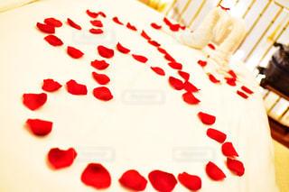花,LOVE,屋内,赤,バラ,花びら,薔薇,ハート,旅行,スワン,ロマンチック,装飾,ハネムーン,Nikon,プロポーズ,はなびら,インスタ映え