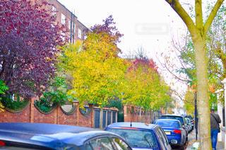 通り側に駐車の写真・画像素材[1194666]