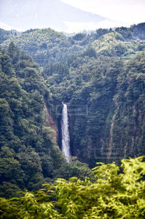 背景の山と木の写真・画像素材[1404152]