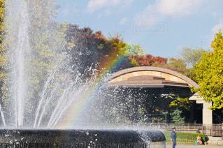 空,公園,虹,噴水,秋空