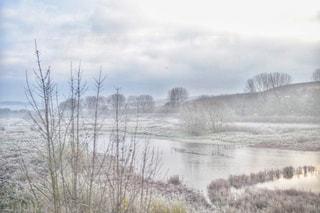 自然,空,冬,森林,屋外,白,雲,川,霧,景色,草,樹木,イギリス,ロンドン,霜,ホワイト,雪化粧,くもり,草木,日中