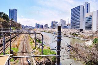 市川に架かる長い橋の写真・画像素材[1832428]