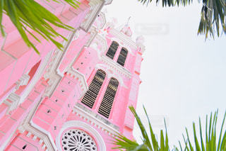 ピンクの花の木の写真・画像素材[1856558]