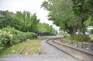 下り列車を走行する列車は森の近く追跡します。の写真・画像素材[1856886]