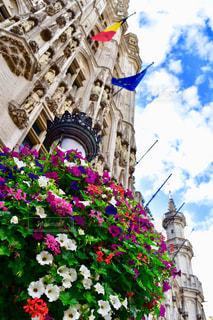 紫の花と建物の写真・画像素材[1856907]
