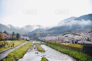 山の側に木がある小道の写真・画像素材[2276630]
