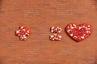 レンガの壁にピンクの花の群れの写真・画像素材[2280332]