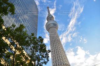 東京スカイツリーを背景にした高層ビルの前に立つキリンの写真・画像素材[2288979]