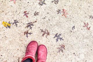浜辺の靴の群の写真・画像素材[2762393]