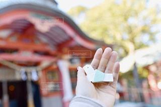 手を閉じるの写真・画像素材[2816290]