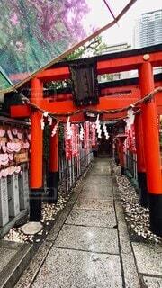 雨,傘,屋外,大阪,神社,かわいい,鳥居,オシャレ,可愛い,地面,雨天,お洒落,縁結び,参拝,お参り,おしゃれ,賽銭,お詣り,お初天神,露天神社