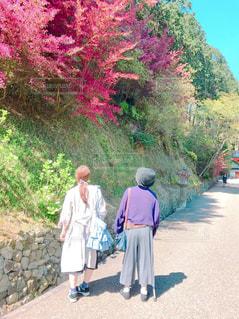 道を歩く人々 のグループの写真・画像素材[751388]