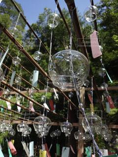 正寿院の風鈴まつりの写真・画像素材[770908]