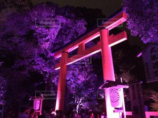 下鴨神社 ライトアップ - No.773001