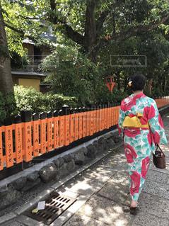 浴衣で京都散策の写真・画像素材[784783]