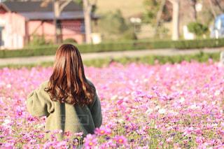草の中に立っている少女の写真・画像素材[1591786]