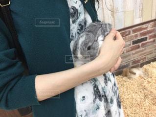 みどり色のコーデでうさぎさんを抱っこ♡の写真・画像素材[2095310]