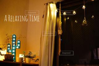 夜,お部屋,植物,ライト,サボテン,くつろぎ