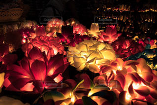 野菜の展示の束が夜ライトアップ - No.779567