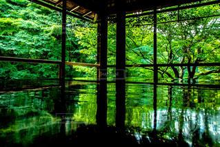 大きな窓の景色 - No.798530