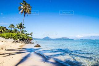 海の写真・画像素材[1096489]