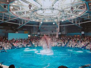 水のプールを泳ぐ人たちのグループ - No.754242