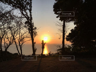 背景の夕日とツリーの写真・画像素材[977206]