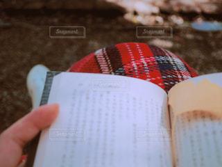 女性,公園,秋,ベンチ,読書,手,木漏れ日,落ち葉,ブランケット,読書の秋,膝掛け
