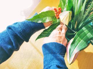 緑,植物,カーテン,手,人物,フラワーアレンジ,南天,百合,生け花,花を生ける