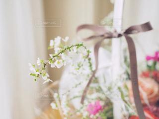 花かごの写真・画像素材[1029185]