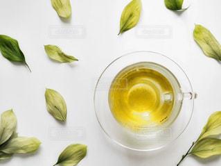 緑,葉っぱ,ガラス,スタイリッシュ,ティーカップ,ナチュラル,緑茶,日本茶,インスタ映え,俯瞰ショット,伊勢茶