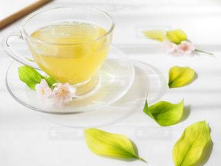 花,春,桜,ピンク,緑,葉っぱ,ガラス,ティーカップ,ナチュラル,お洒落,緑茶,日本茶,伊勢茶