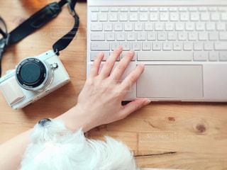 コンピューターと犬と私の写真・画像素材[1800488]
