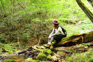 緑豊かな緑の森に立っている人の写真・画像素材[769985]