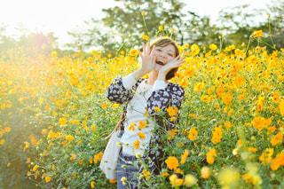 フィールド内の黄色の花の写真・画像素材[894297]