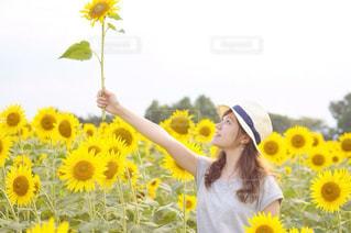 黄色のフリスビーを持っている人の写真・画像素材[897007]
