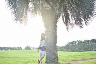 ヤシの木の横にある緑豊かな緑のフィールドに立っている人の写真・画像素材[1036067]