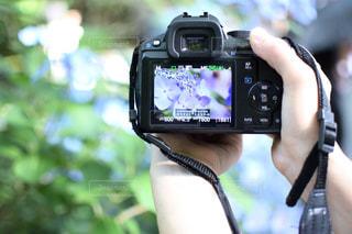 携帯電話を持つ手の写真・画像素材[1440959]