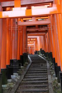絶景,京都,鳥居,観光,伏見稲荷大社,和風,千本鳥居,伏見稲荷